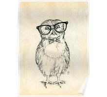 Nerdy Owlet Poster
