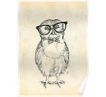 Nerdy Owlet Poster
