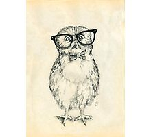 Nerdy Owlet Photographic Print