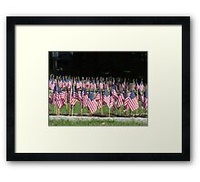 Little Flags Framed Print