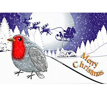 Merry Christmas from the Baby Robin card Photographic Print