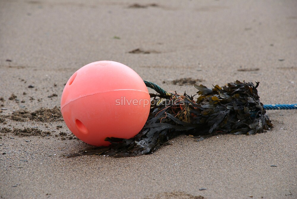 Discarded fishing buoy on beach, Bantham, Devon, UK by silverportpics