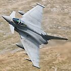 Eurofighter Typhoon  by David Ellins