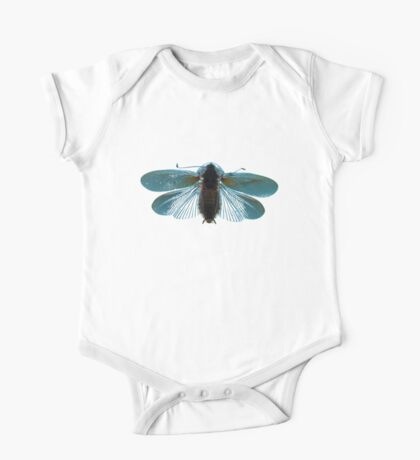 Blue Moth Kids Clothes