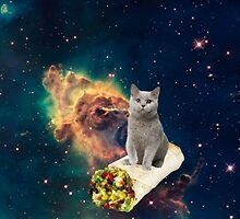 Cat in space 4 by artkid