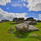Dartmoor: Ugborough Beacon by Rob Parsons