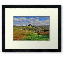 Dartmoor: Heading to Vixen Tor Framed Print