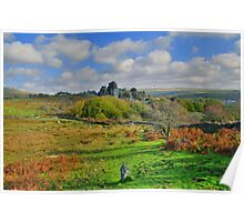 Dartmoor: Heading to Vixen Tor Poster