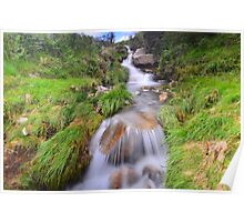 Dartmoor: Lud Brook Poster