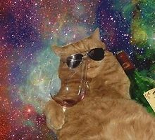 Cat in space enjoying a drink  by artkid