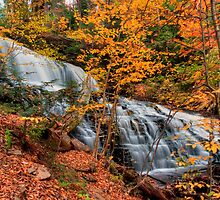 Mohawk Falls Among The Autumn Leaves by Gene Walls