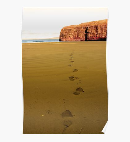 footprints in sandy empty beach on a beautiful winters day Poster