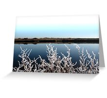 frosty branches in snow against cold blue sky and river Greeting Card