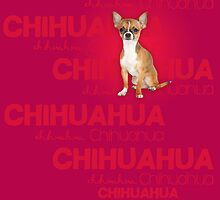 Chihuahua #3 by ChiliMonsters