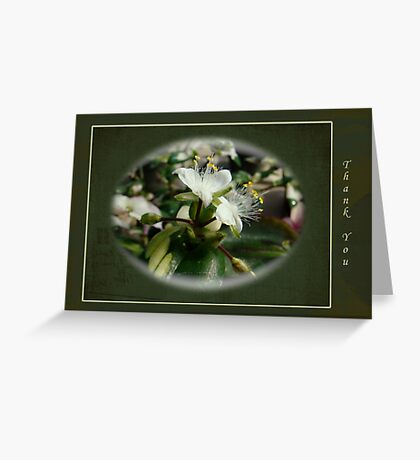 Thank you Greeting Card - White Flower Greeting Card