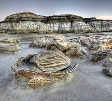 The Egg Factory Bisti/De-Na-Zin Wilderness  by Bob Christopher