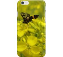 Yellow flower and bee iPhone Case/Skin