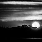 Day Zero.... by Thomas Eggert