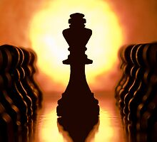 Chess set by Fully-Focused