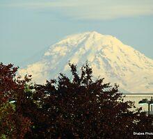 Mt. Rainier WA by Bhabes