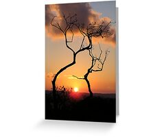 Sunset Middle Harbour Greeting Card