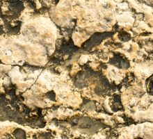 Top view of the natural background of yellow limestone Sticker