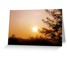 Sunset Silouhettes Greeting Card