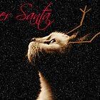 Deer Santa by Ladymoose