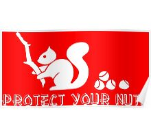 Protect your nuts Poster
