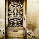 Door in Langres by A. Duncan