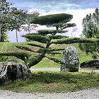 In the Garden of Japan (2) by Larry Lingard-Davis