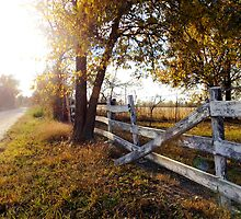 Fallen Fence in Autumn Beauty by MissCandacePope