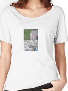 Javier's Diptych Women's Relaxed Fit T-Shirt