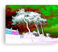 White Trees And Green Skies Canvas Print