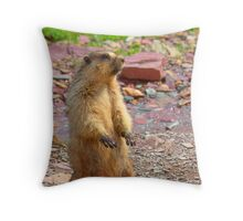 hey...what's over there? Throw Pillow