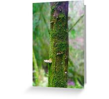 Miniature Forest Tree Greeting Card