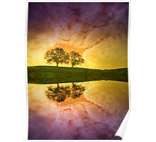 Two Trees in Colour Poster