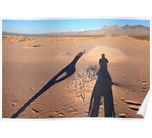 Shadows on dunes Poster
