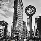 Flatiron Rush by Andrew Paranavitana