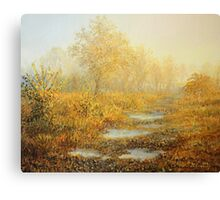 Soft Warmth Canvas Print