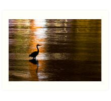 Great Blue Heron in Stanley Park Art Print