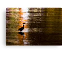 Great Blue Heron in Stanley Park Canvas Print
