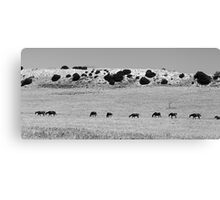 The Line-up Canvas Print
