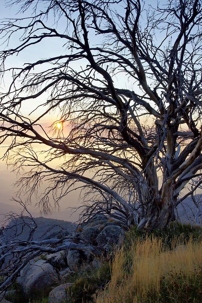 Smokey Sunset by Harry Oldmeadow