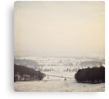 Snow covers the land Canvas Print