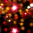 Pink Flower Lights by TravelShots