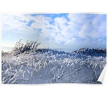 frosty snow covered grass ditch Poster