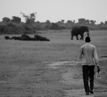 Walking with the elephants by Hannah Nicholas