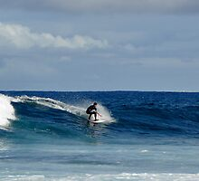 surfs up by stevenburns4