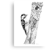 Greater Spotted Woodpecker Canvas Print